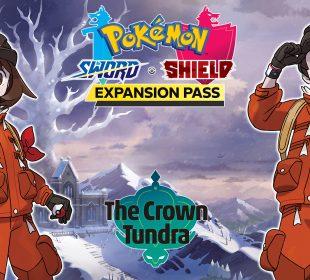 Pokémon Sword & Shield: The Crown Tundra